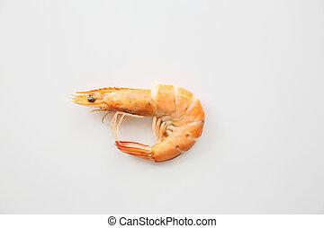 camarón, aislado, en, fondo blanco