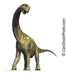camarasaurus, dinosaurio, 2