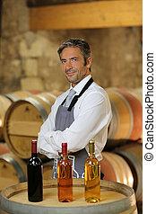 camarero de vino, posición, en, bodega