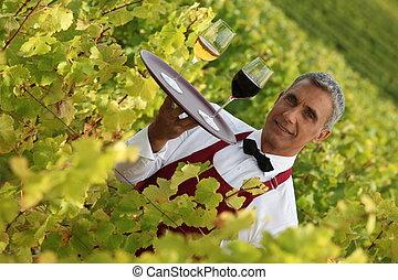camarero, porción, gafas vino, en, un, viña