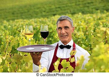 camarero, se paró, en, viña, con, bandeja, de, gafas vino