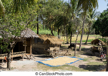 Cambodian farm - Cambodian country farm scenery near Siem...