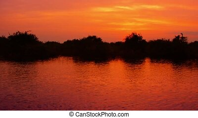 Cambodian river and wetlands at sunset - Video 1080p -...