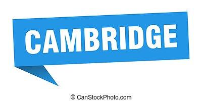 cambridge, azul, sticker., signpost, sinal, ponteiro