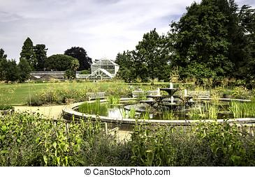 Cambridge, botanica, Inglaterra, jardim