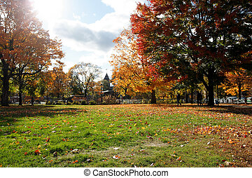 Cambridge Common in Fall landscape