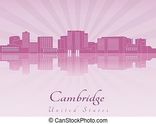 Cambridge MA skyline in purple radiant orchid