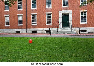 Cambridge park in the university