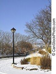 Cambridge Winter