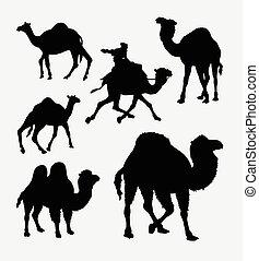 Camel and dromedaries animal silhouette
