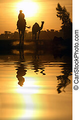 Camel and Reflection