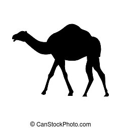 camel animal silhouette isolated icon