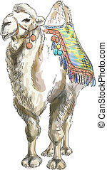 Camel Bactrian. Watercolor style. Vector illustration on white background.