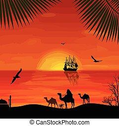 Camel caravan at sunset on the beach