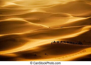Camel Caravan - Camel caravan going through the sand dunes ...