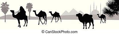 Camel caravan going through the desert