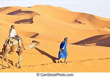 Camel caravan going through the sand dunes in the Sahara...