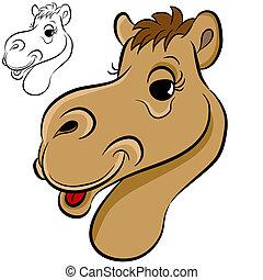 An image of a camel face.