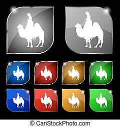 Camel icon sign. Set of ten colorful buttons with glare. Vector