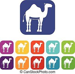 Camel icons set flat