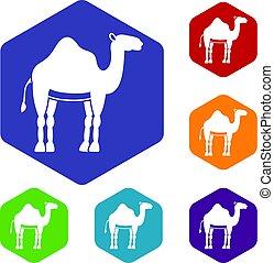 Camel icons set hexagon