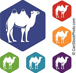 Camel icons set rhombus in different colors isolated on...