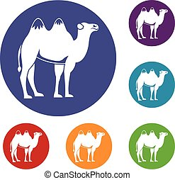 Camel icons set