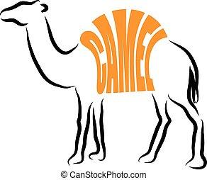 CAMEL ILLUSTRATION LETTERING