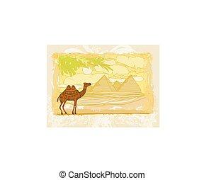 Camel in egypt desert