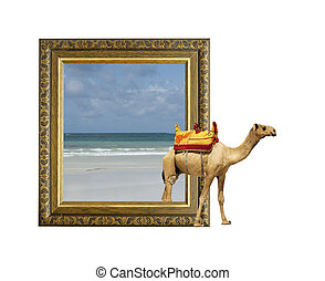 Camel in frame with 3d effect