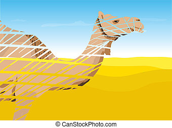 Camel in the Desert, vector illustration.