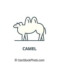 Camel line icon, vector. Camel outline sign, concept symbol, flat illustration
