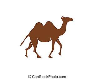 Camel logo template