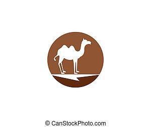 Camel logo template vector icon