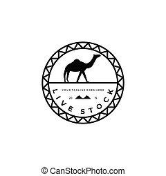 camel logo vector illustration design, livestock logo