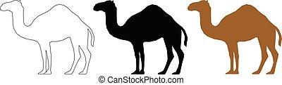 Camel set black white and bronze