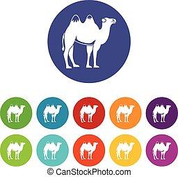 Camel set icons