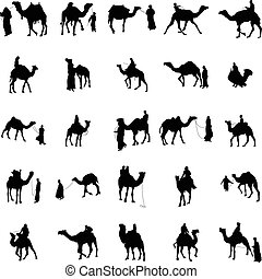 Camel silhouette set