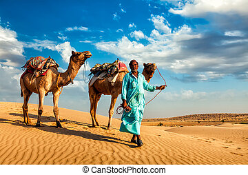 Cameleer camel driver with camels in dunes of Thar desert -...