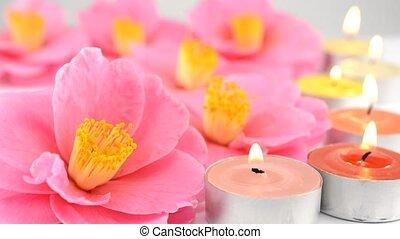 camellia, bloemen, en, kaarsjes
