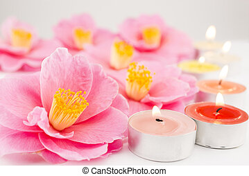 Camellia flowers and candles - Pink camellia flowers and tin...