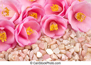Camellia flowers and gemstone