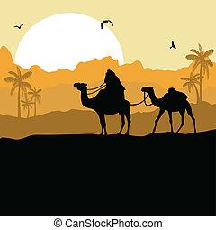 camello, caravana, en, desierto