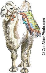 camello, style., acuarela, bactrian.