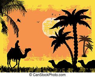 camellos, en, el, desierto