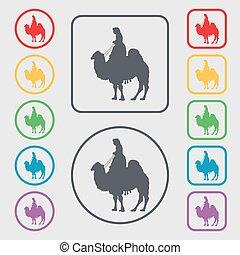 camelo, ícone, sinal., símbolo, ligado, a, redondo, e, quadrado, botões, com, frame., vetorial