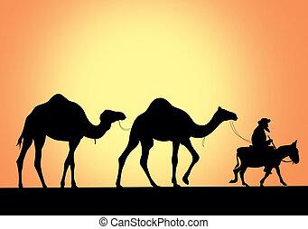 camelo, caravana, ilustração, vetorial