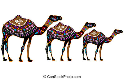 Camels in the ethnic style on a white background