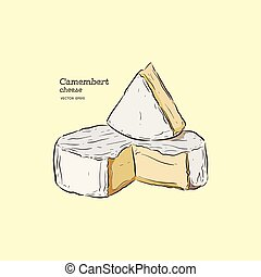 camembert cheese, hand draw sketch vector.
