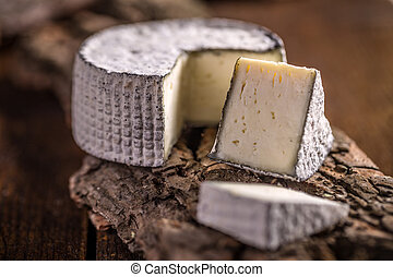 Camembert cheese, traditional milk creamy dairy product
